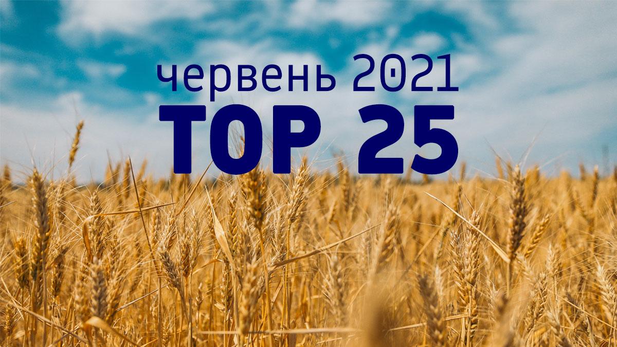 TOP-25 найпопулярніших сайтів в Україні, червень 2021 р.